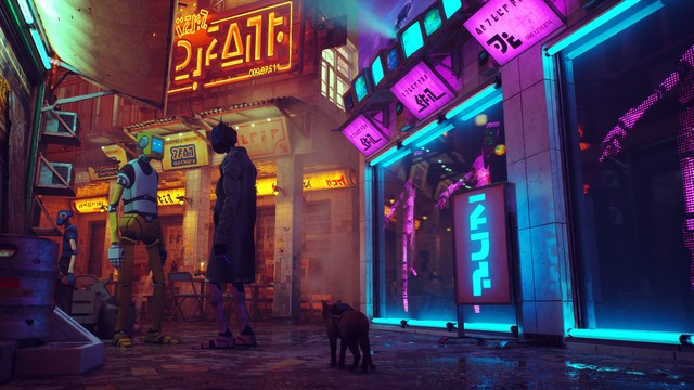 Cat in street